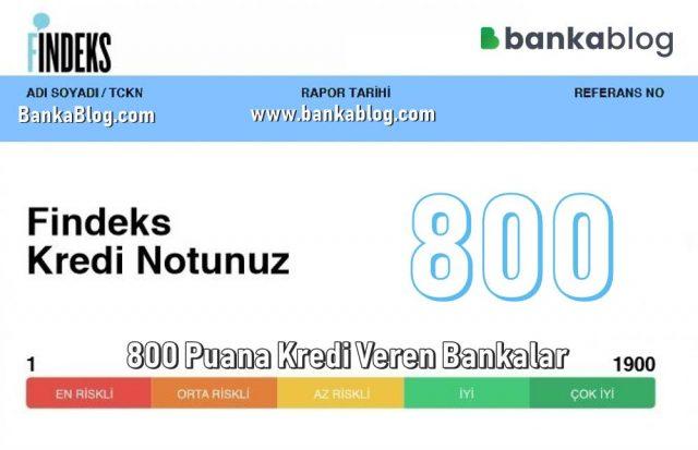 800 Puana Kredi